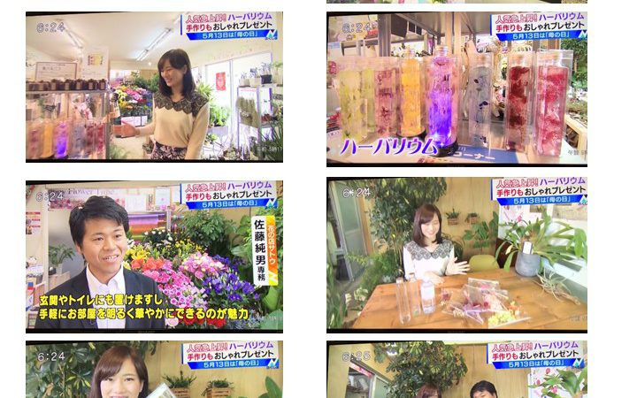 5/8 TUF Nスタふくしま