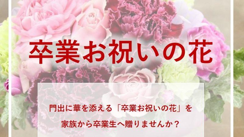 「卒業お祝いの花」花代無料で100セットご提供!
