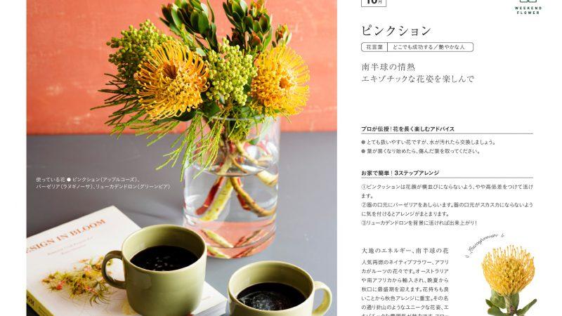 【10月ピンクッション】花のある週末を【WEEKEND FLOWER】