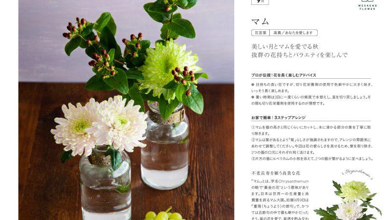 【9月マム】花のある週末を【WEEKEND FLOWER】