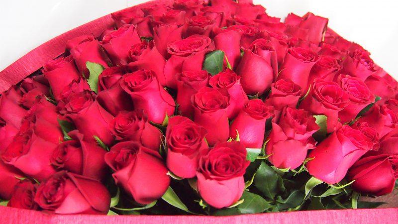 【プロポーズ】108本のバラの花束