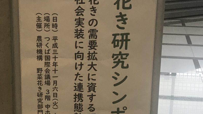 農研機構「花き研究シンポジウム」に出席しました