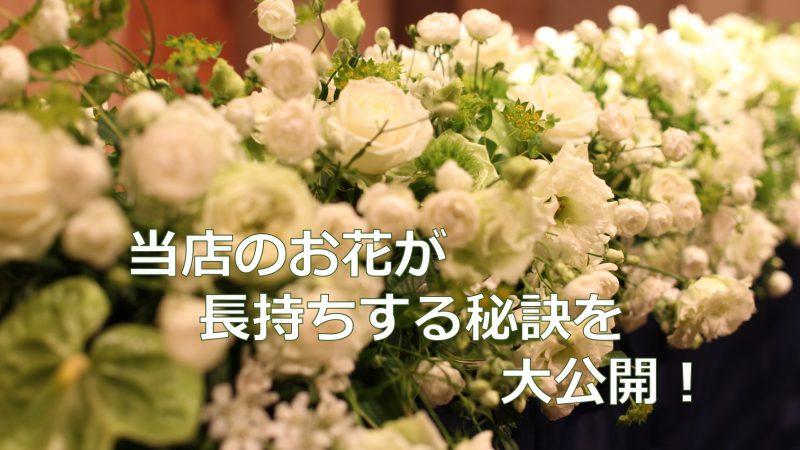 お花を長持ちさせる秘訣を大公開!