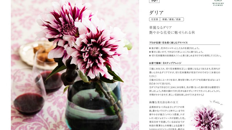 【10月ダリア】花のある週末を【WEEKEND FLOWER】