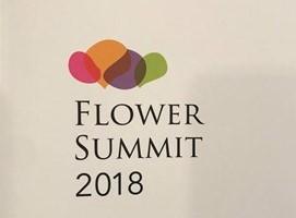 FLOWER SUMMIT2018のパネルディスカッションへ登壇