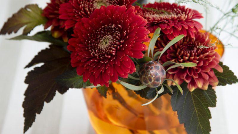 【11月 ガーベラ】花のある週末を ~WEEKEND FLOWER~