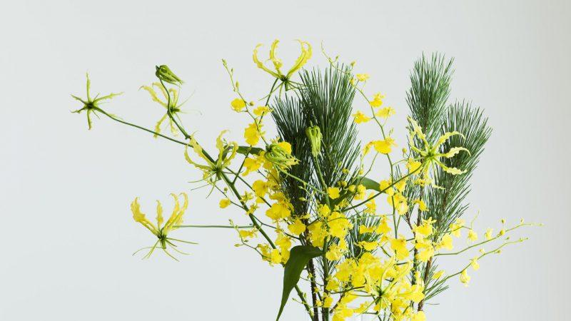 【12月 グロリオサ】花のある週末を ~WEEKEND FLOWER~