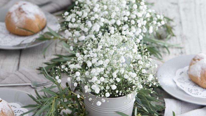 【11月 かすみ草】花のある週末を ~WEEKEND FLOWER~